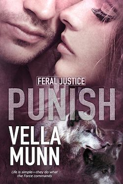 Punish by Vella Munn